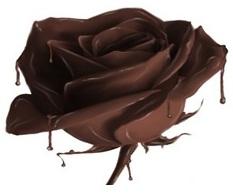 סדנאת שוקולד